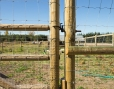 agricultural fencing